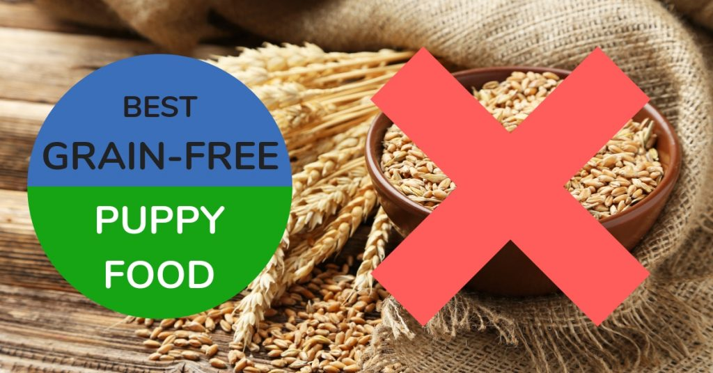 Best Grain-Free Puppy Food, crossed-out bowl of grains