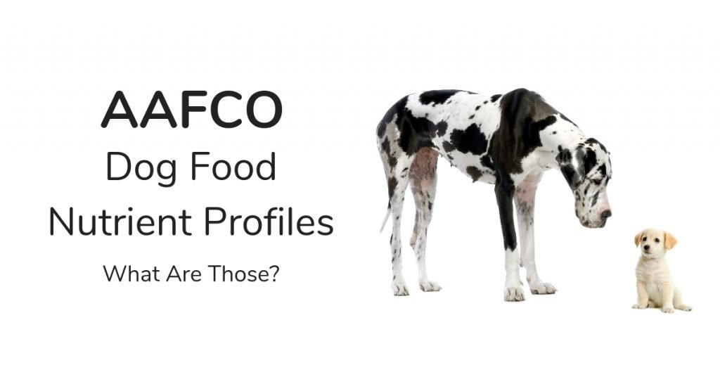 What Are AAFCO Dog Food Nutrient Profiles - Giant dog and tiny puppy side by side