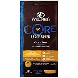 Wellness Core Grain Free Dry Dog Food Large Breed Puppy