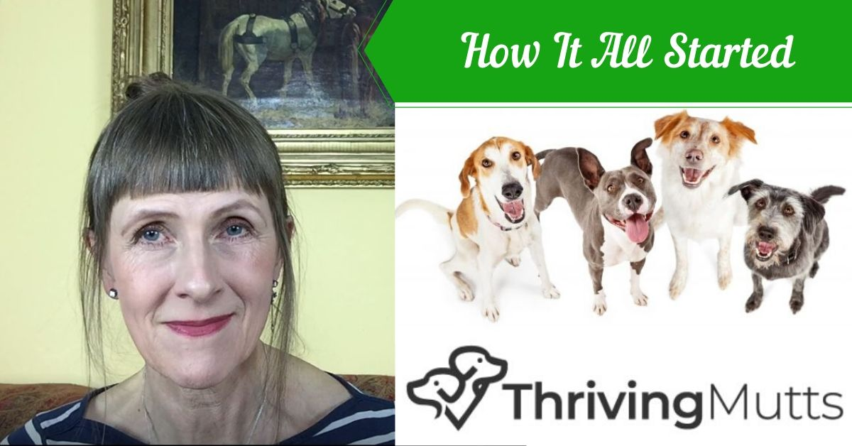 Thriving Mutts - The Beginning