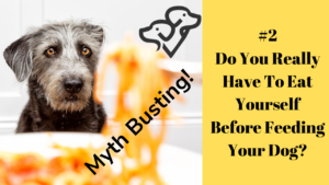 Busting Dog Listening Myths - You Must Always Eat Before Your Dog
