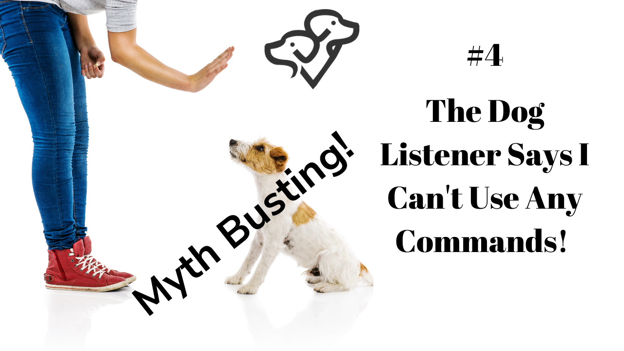 Dog Listening is all about body language and human behavior, but you can absolutely train your dog as well!