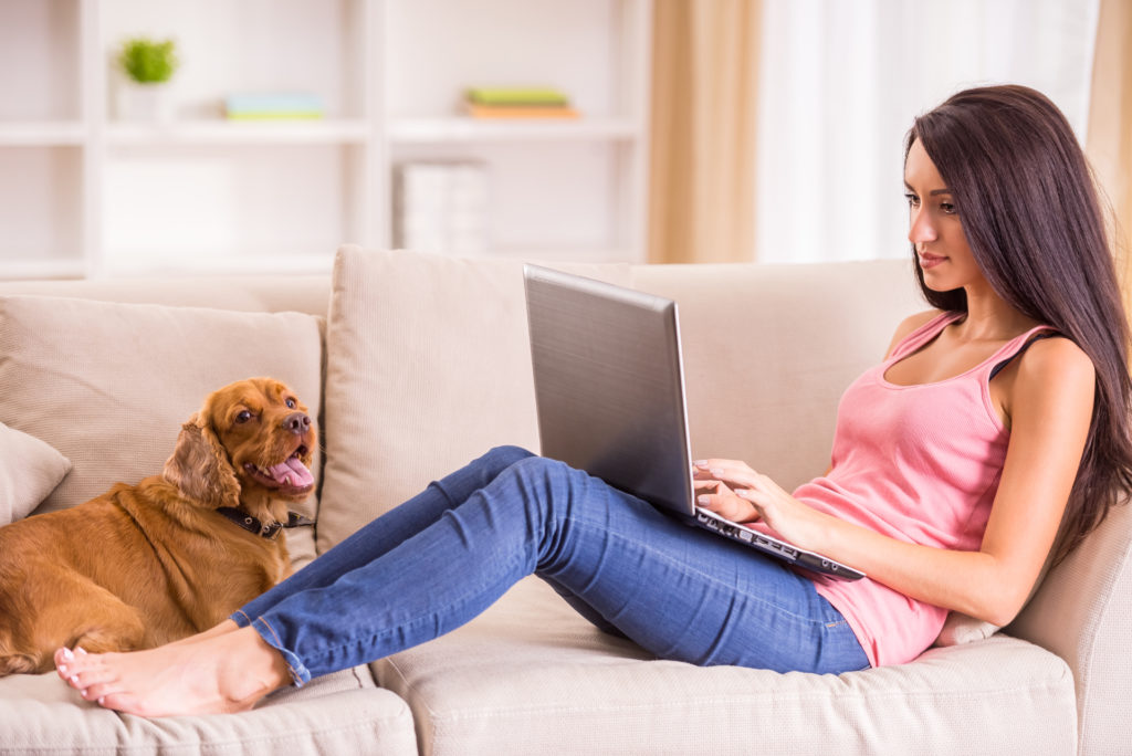 Online coaching sessions dog training
